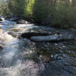 Cool mountain streams refresh and revive during our hot summers