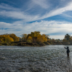 Exploring the American River, Part Four