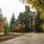 10 great things to do in the Fall in the Sacramento Valley