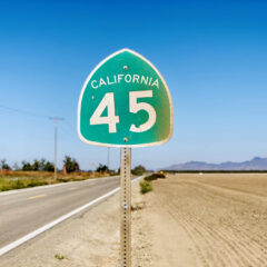 Pandemic Therapy – Serene Highway 45