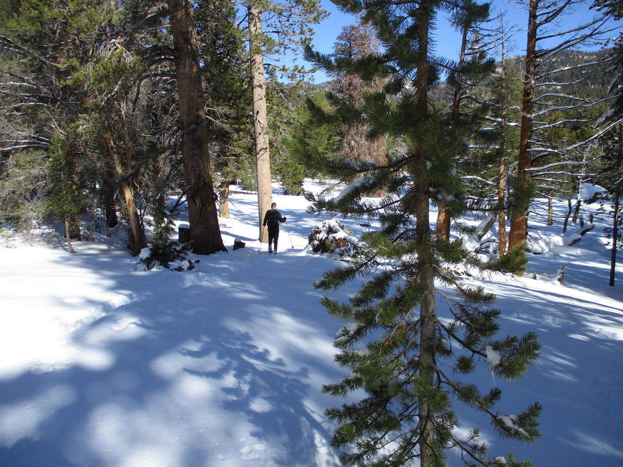 people snowshoeing through Hope Valley