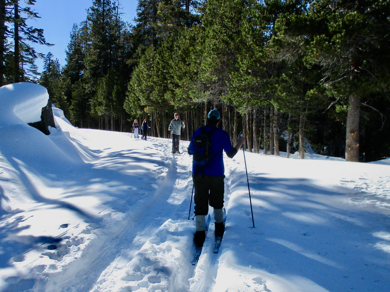 people snowshoeing a winter trail
