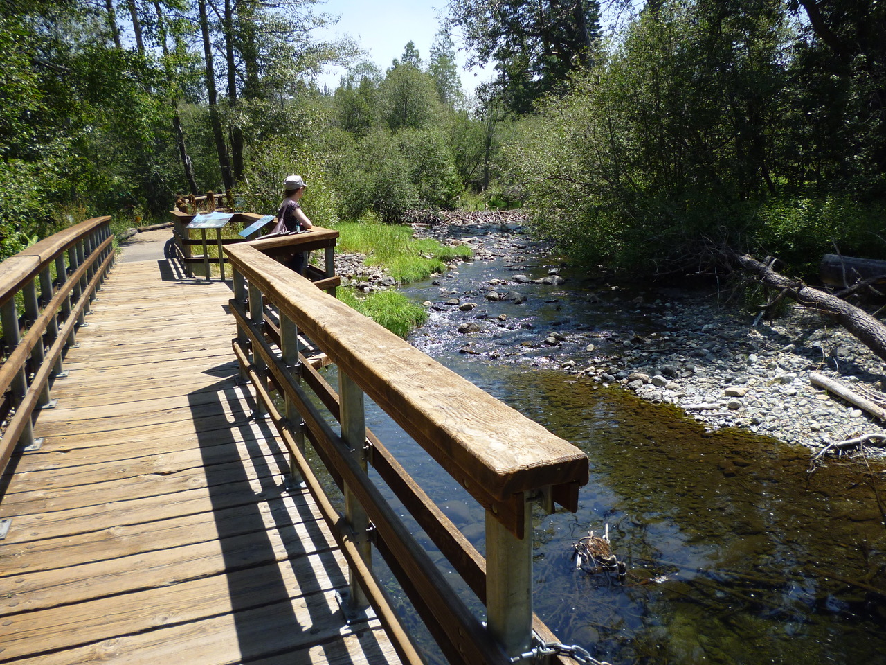 The Rainbow Trail and Taylor Creek Visitor Center - Sacramento Valley