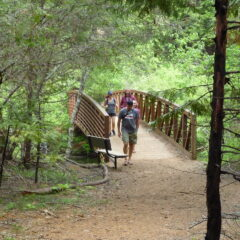 Wonderful Outdoor Experiences Await You At Sly Park