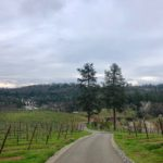 Meet Starfield Vineyards